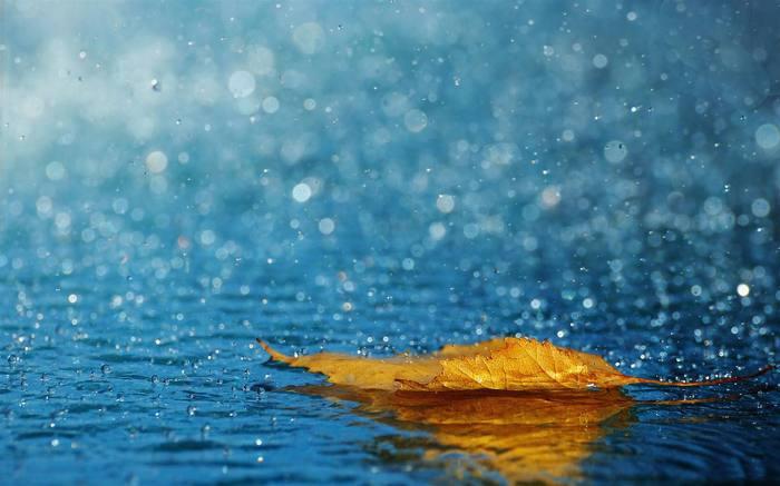 beautiful-rain-wallpaper-1